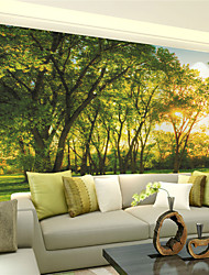 JAMMORY Wallpaper For Home Wall Covering Canvas Adhesive required Mural Jungle Life XL XXL XXXL