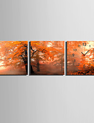 MINI SIZE E-HOME Autumn Woods Clock in Canvas 3pcs