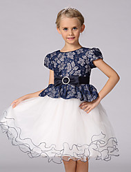 Girl's Fall Long Sleeve Princess Girl Party/ Wedding Dress
