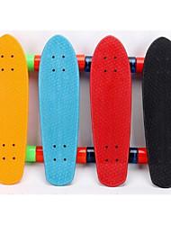 Standard SkateboardsBlack Yellow Red Green Blue