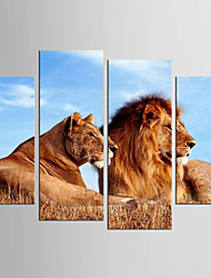 Canvas Set Abstract Animal Modern Realism,Four Panels Canvas Any Shape Print Wall Decor For Home Decoration