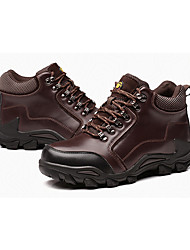 Men's Athletic Shoes Winter Other Other Animal Skin Outdoor Low Heel Lace-up Black Dark Brown Hiking