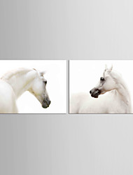 Canvas Set Abstract Animal Classic Traditional,Two Panels Canvas Horizontal Print Wall Decor For Home Decoration