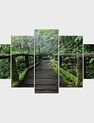 Stretched Canvas Print Floral/Botanical Pastoral,Five Panels Canvas Any Shape Print Wall Decor For Home Decoration