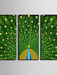 E-HOME Stretched Canvas Art Blooming Green Peacocks Decoration Painting Set Of 3