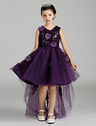 Ball Gown Asymmetrical Flower Girl Dress - Organza V-neck with Crystal Detailing Embroidery Flower(s) Lace