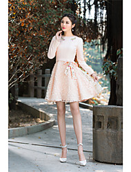 Women's Going out Vintage A Line Dress,Embroidered Round Neck Above Knee Long Sleeve Rayon Spring Low Rise Micro-elastic Medium