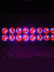 1pcs 240smd 580w vermelho e azul levou luzes de crescimento de plantas