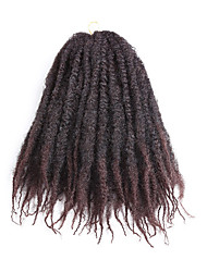 Curly Curly Braids Hair Extensions Hair Braids