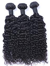 El pelo natural rizado profundo del pelo del pelo virginal brasileño del pelo del beata 8-30inch teje 3 PC / porción