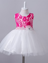 Ball Gown Short / Mini Flower Girl Dress - Polyester Lace Tulle Jewel with Bow(s) Crystal Detailing Flower(s) Sash / Ribbon Ruffles