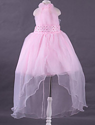Princess Asymmetrical Flower Girl Dress - Polyester Lace Sleeveless Halter with Beading