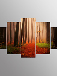 Stretched Canvas Print Floral/Botanical Modern,Five Panels Canvas Any Shape Print Wall Decor For Home Decoration