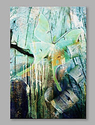 Abstract Printed Green Butterfly on Canves with Stretched Frame For Home Decoration
