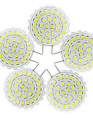 2W Luces LED de Doble Pin T 31 SMD 2835 150-200 lm Blanco Cálido Blanco Fresco V 5 piezas