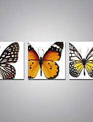 Stretched Canvas Prints Brown and Yellow Butterfly Picture Printed on Canvas Modern Art for Wall Decoration