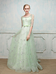 Ball Gown Illusion Neckline Sweep / Brush Train Tulle Formal Evening Dress with by MMHY