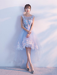 Cocktail Party Dress Ball Gown Jewel Asymmetrical Tulle with Lace
