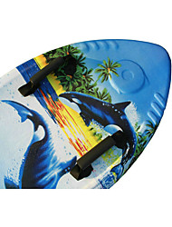 Surfboard Water Sports Summer Swimming Essential
