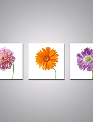 Stretched Canvas Prints Pink Orange and Purple Flowers  Printed on Canvas Modern Art for Home Decoration