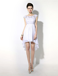 Cocktail Party Dress - Beautiful Back Sheath / Column Jewel Asymmetrical Chiffon with Lace