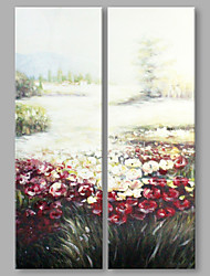 IARTS® Hand Painted Abstract Oil Painting Blossom Wild Flowers Set of 2 with Stretched Frame Handmade Oil Painting For Home Decoration Ready To Hang