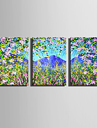 E-HOME Stretched Canvas Art  The Scenery Outside The Flowers Decoration Painting Set Of 3