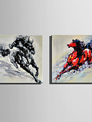 Mini Size E-HOME Oil painting Modern Looking Back At The Running horse Pure Hand Draw Frameless Decorative Painting Set of 2