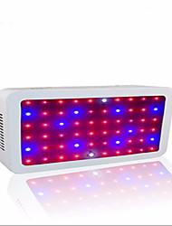 Luz de LED para Estufas Branco Frio Vermelho Azul 1 pç
