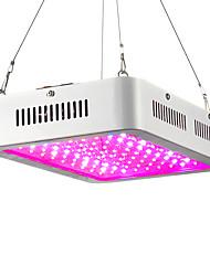 240W LED Grow Lights 100 High Power LED 200-2300 lm Warm White UV (Blacklight) Red Blue AC85-265 V 1 pcs