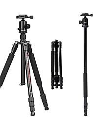 Liga de alumínio e magnésio 50 4.0 Secções Nikon Canon Tripê