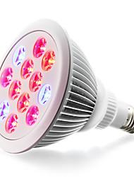24W E26/E27 Luci LED per la coltivazione 24 LED ad alta intesità 1200-1600 lm Rosso Blu V 1 pezzo