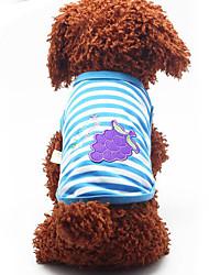 Собака Жилет Одежда для собак На каждый день Фрукты Оранжевый Красный Зеленый Синий Розовый
