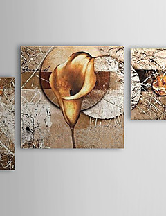 Käsin maalatut öljymaalaus Kukka Calla Lily Set of 3 1302-FL0059