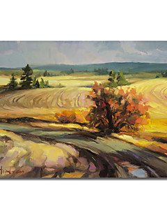 Printed Canvas Art Landscape Highland Road by Steve Henderson with Stretched Frame