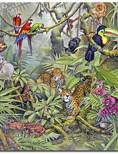 Imprimé sur toile Jungle des animaux par Tim Knepp avec cadre étiré
