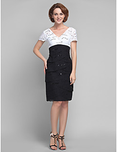 Sheath/Column Plus Sizes Mother of the Bride Dress Knee-length Short Sleeve Lace