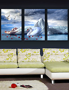 Stretched Canvas Art People Lady with Swan Set of 3