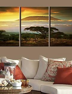 Op gespannen doek Landschap Kilimanjaro Mountain Set van 3