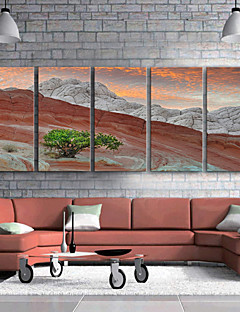 E-HOME® Stretched Canvas Art Rock Mountain Decoration Painting  Set of 5