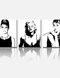 VISUAL STAR®Audrey Hepburn Stretched Canvas Print Marilyn Monroe Star Home Decoration Arts
