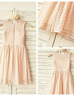 A-line Knee-length Flower Girl Dress - Lace Sleeveless Scoop with