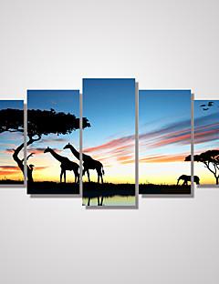 Landschap Vrije tijd Dieren Klassiek,Vijf panelen Horizontaal Print Art Muurdecoratie For Huisdecoratie