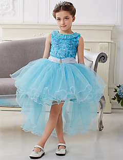 Blue Chiffon Frozen Girls' Luxury Swallow Tail Ball Gown Dress