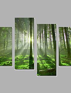 Landscape / Botanical Canvas Print Four Panels Ready to Hang,Any Shape(No Frame)