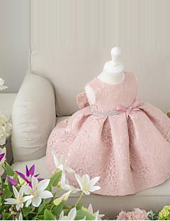 Plesové šaty Krátký / Mini Šaty pro květinovou družičku - Krajka Bez rukávů Klenot s Mašle