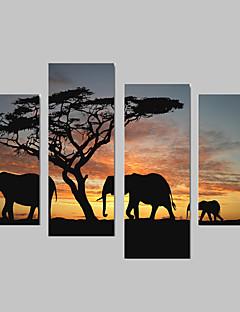 Animal Toile Quatre Panneaux Prêt à accrocher,Format Vertical
