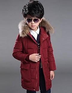Boy Běžné/Denní Tisk Zima S podšívkou Polyester Modrá / Červená