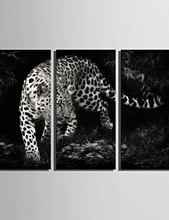 Animal Toile Trois Panneaux Prêt à accrocher , Format Vertical