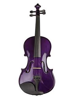 Viool Glans Snaarinstrument Hoes